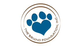 Bruno Foundation